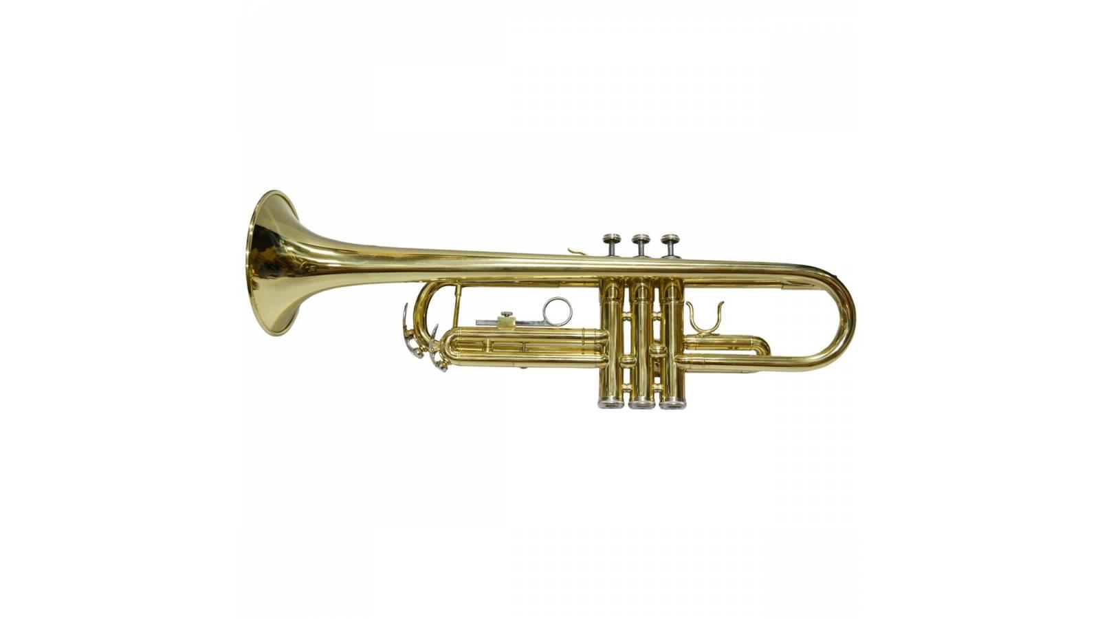 Trompeta Fever Excelente Calidad y Sonido + Estuche para su transporte